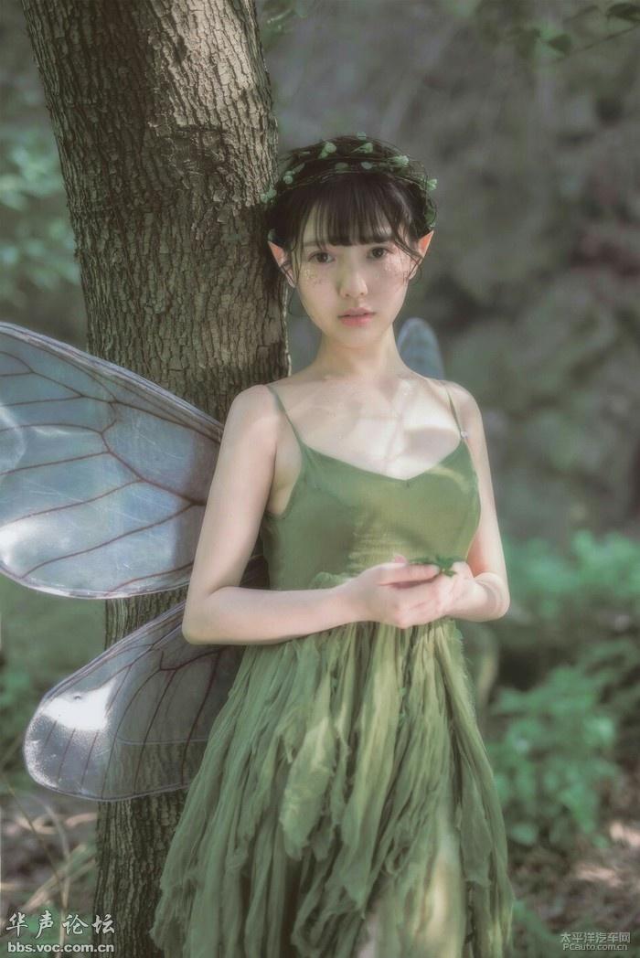森林精灵天使 找了好久的一套图片