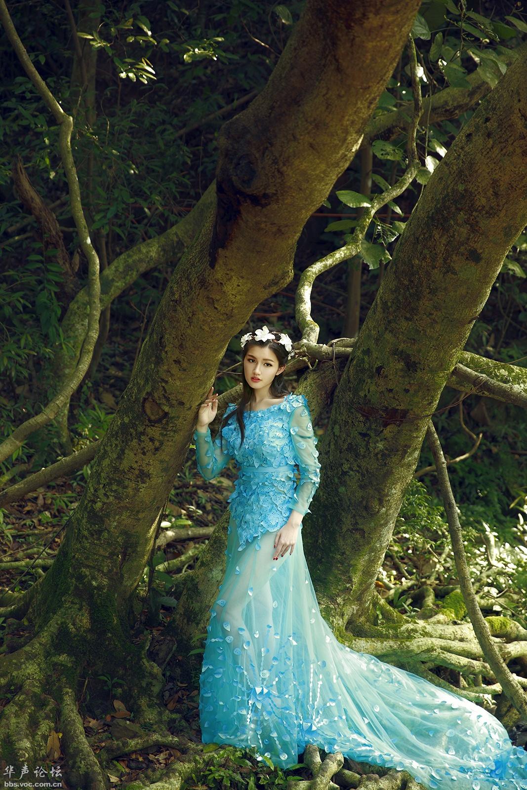 森林丽影  清純典雅 - 花開有聲 - 花開有聲