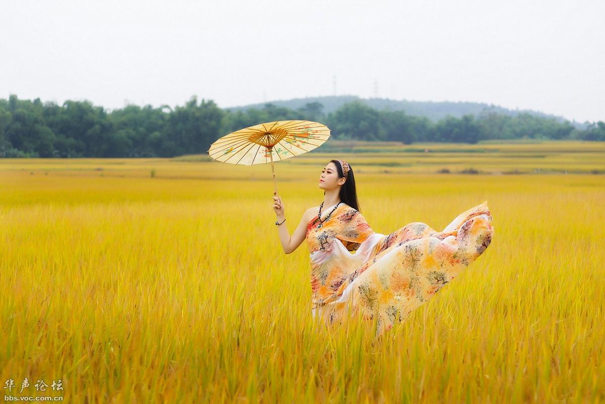 稻谷香 - 花開有聲 - 花開有聲