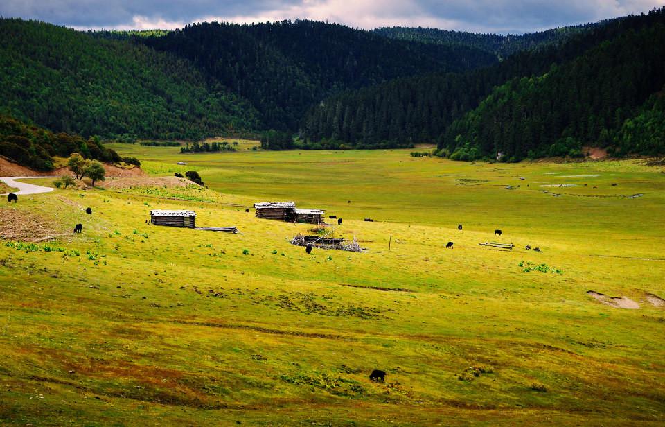 普达措国家公园自然景观
