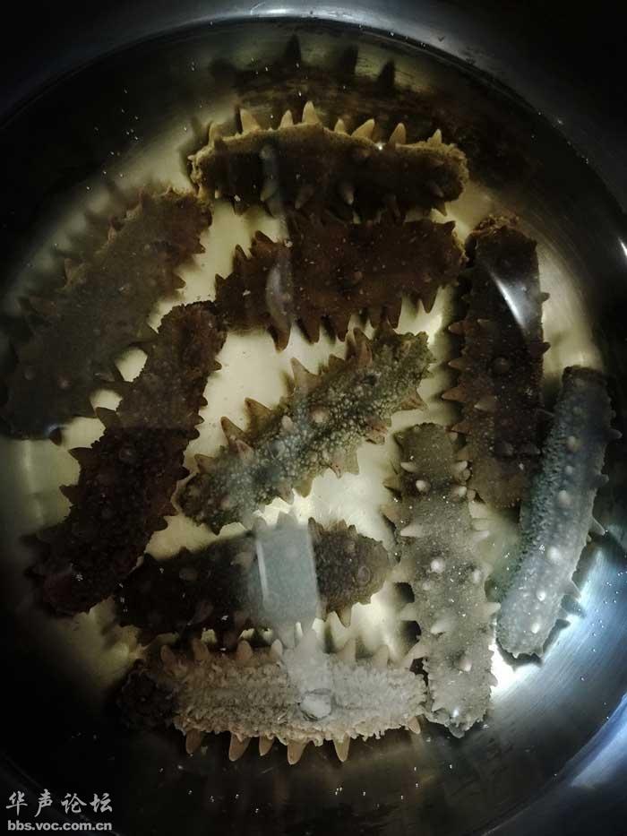海参篇 海参最好吃最营养的几种做法(美食) - 阳子 - ab30208cdefg的博客