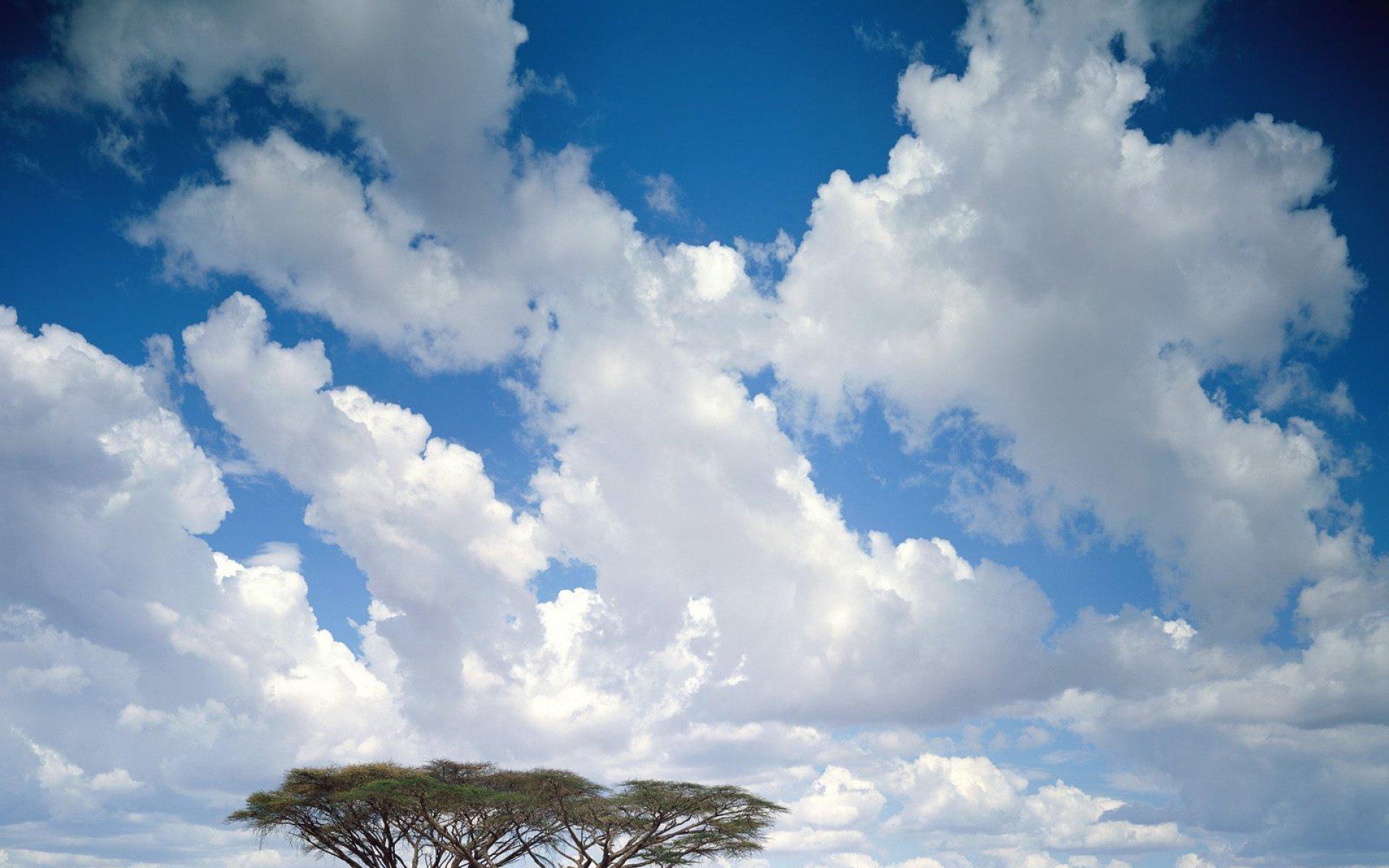 . 蓝天白云 2 壁纸