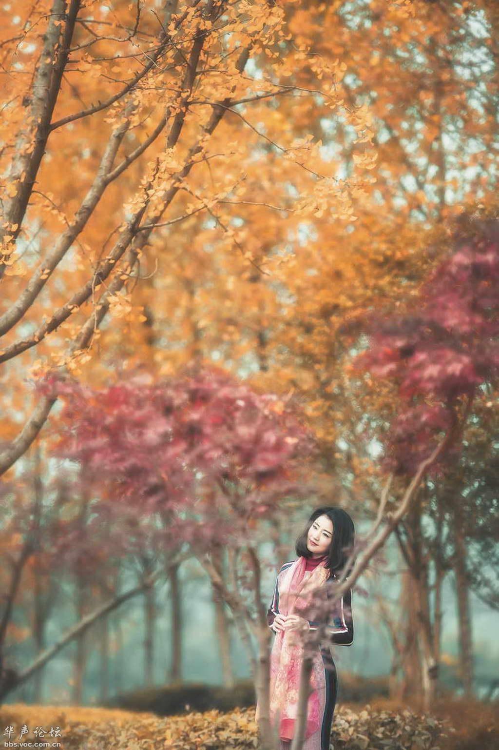 秋色迷离 - 白云深处 - 白云深处的博客