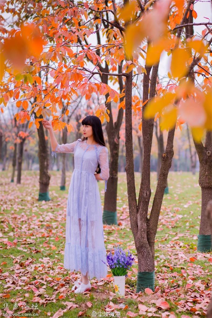 清纯少女一身淡紫色长裙,犹如森林般的仙子那般美丽[20P]