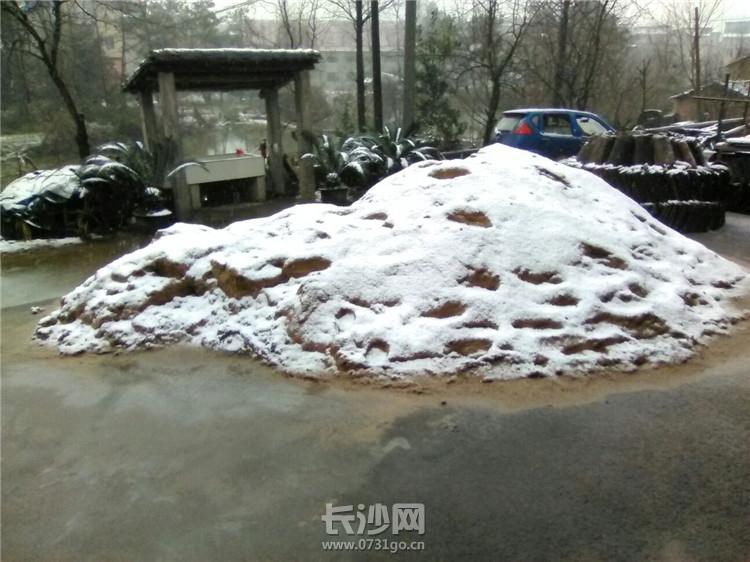 下雪1.jpg