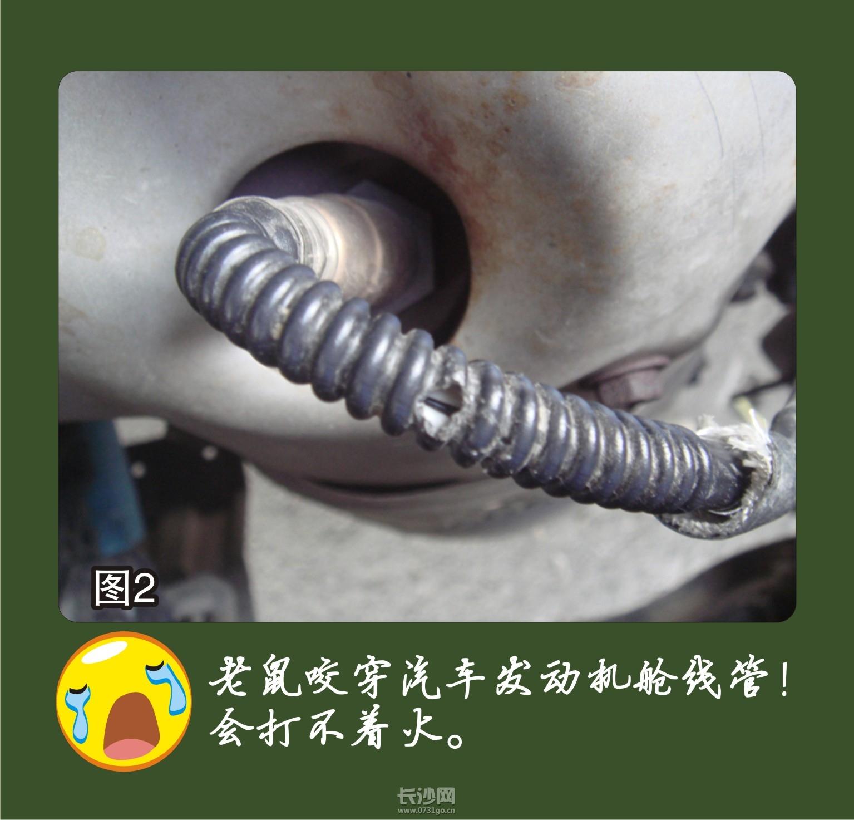 PIC_20120709_094002_A6B_M.jpg