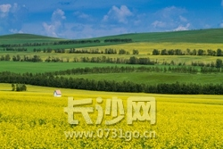 呼伦贝尔大草原 (28).jpg