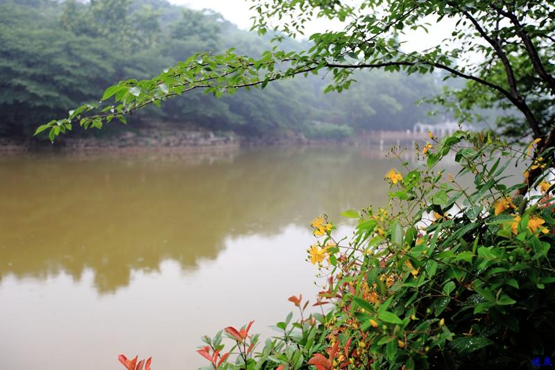 植物园--21.jpg