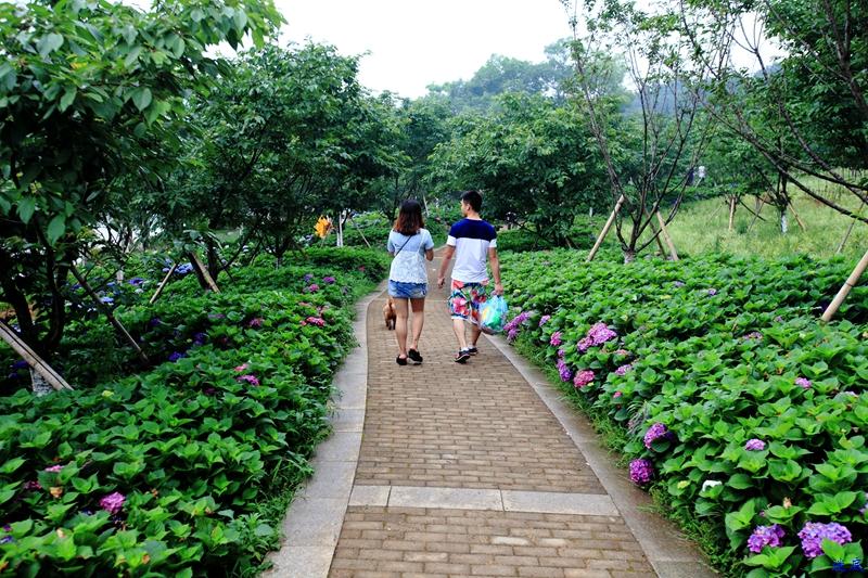 植物园--52.jpg