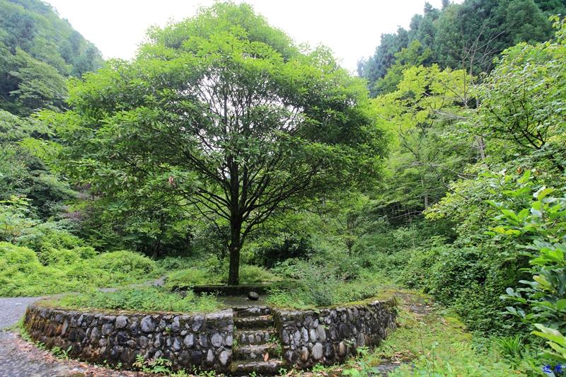5.木林子--7.jpg