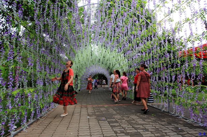 紫藤花海--18.jpg