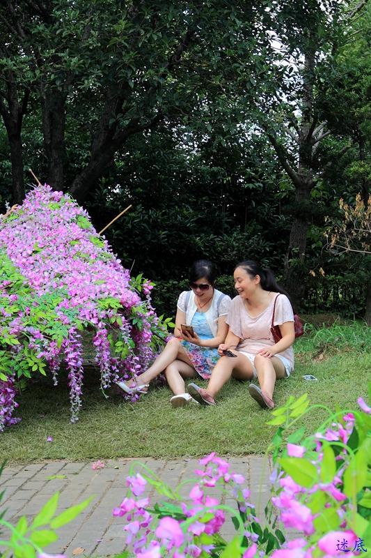 紫藤花海--50.jpg