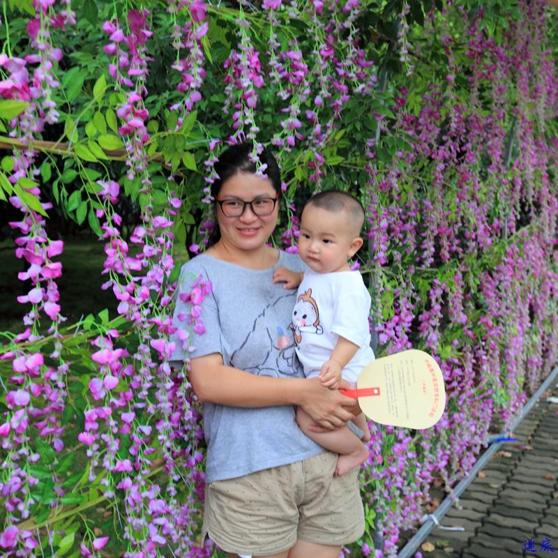紫藤花海--85.jpg