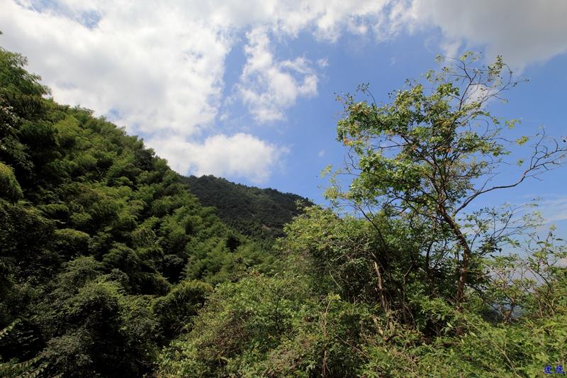 1.福寿山--83.jpg