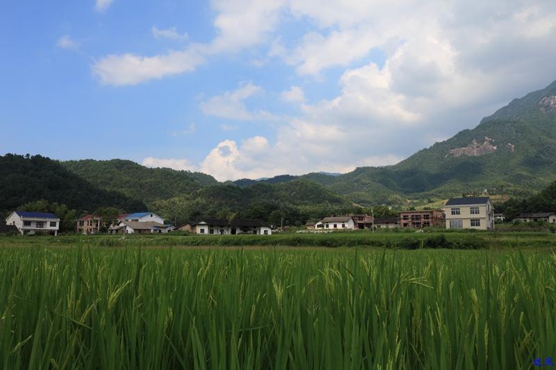 2.白寺村--3.jpg