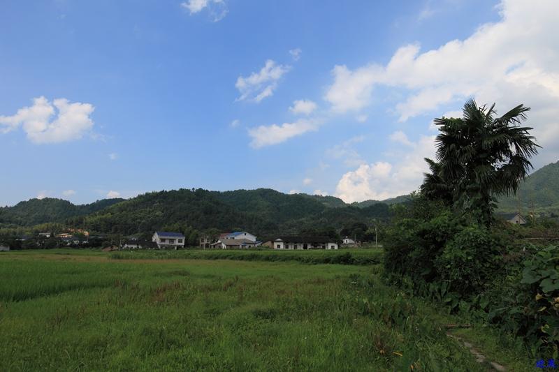 2.白寺村--7.jpg