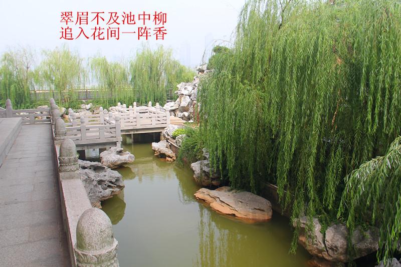 南昌 220.jpg