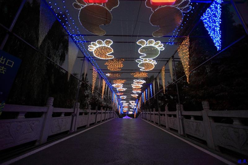 洋湖草雕灯光节--100.jpg