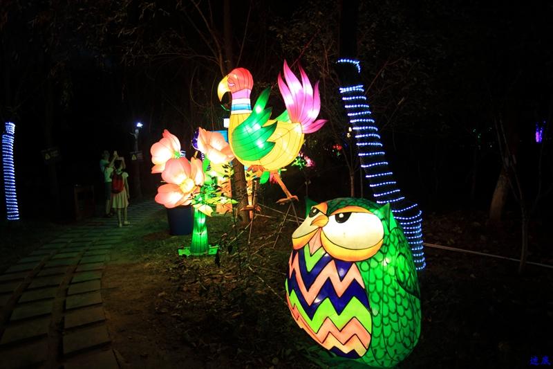 洋湖草雕灯光节--120.jpg
