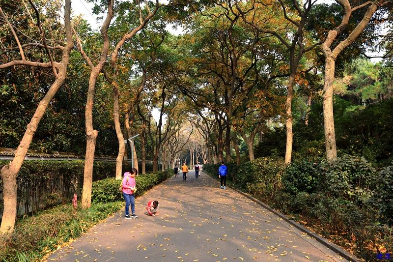 烈士公园之秋39.jpg