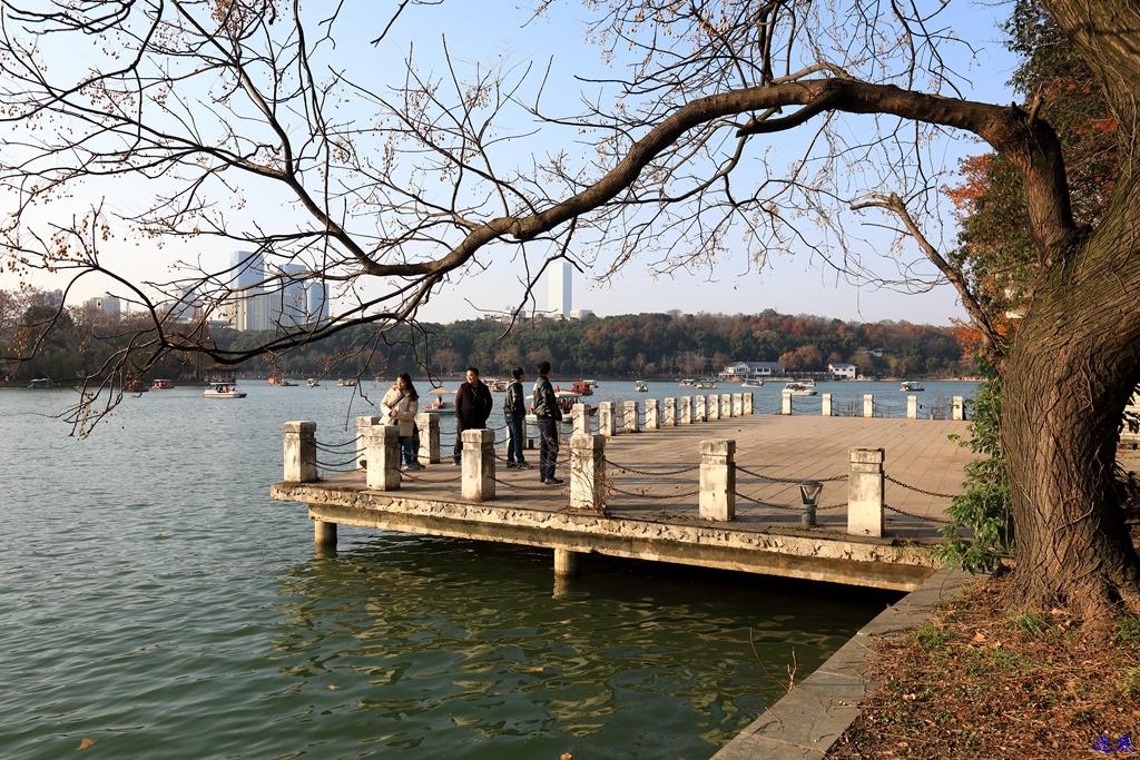 初冬的公园--29.jpg