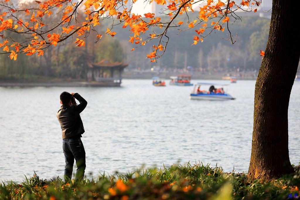 初冬的公园--47.jpg