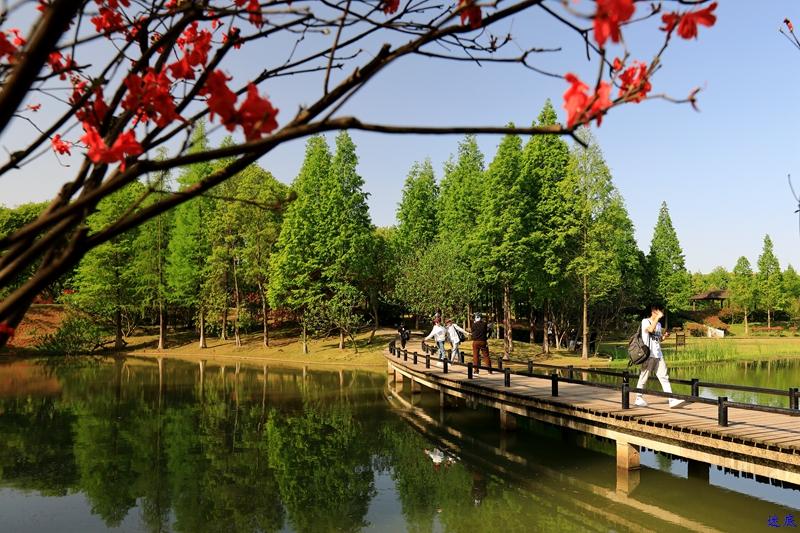 生态园--2.jpg