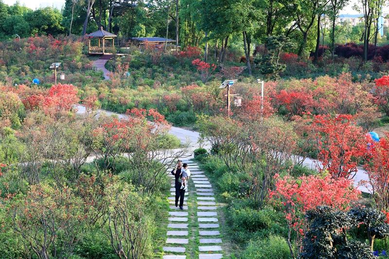生态园--115.jpg