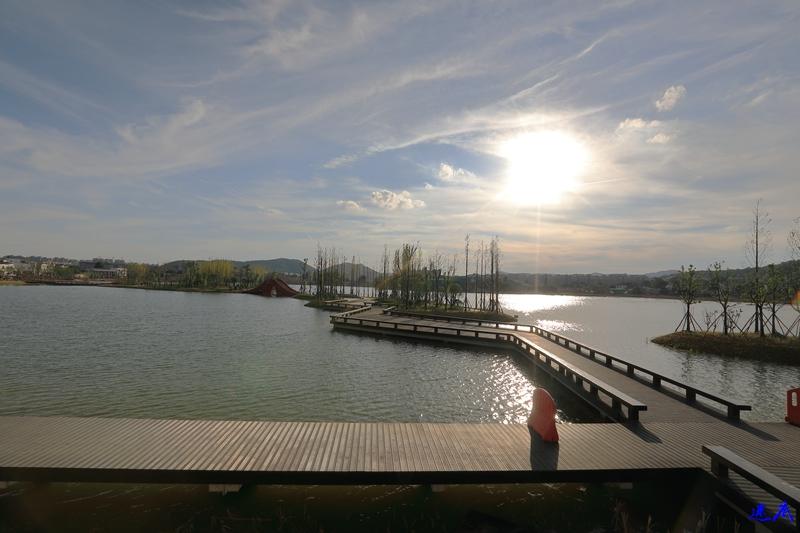 后湖--3.jpg