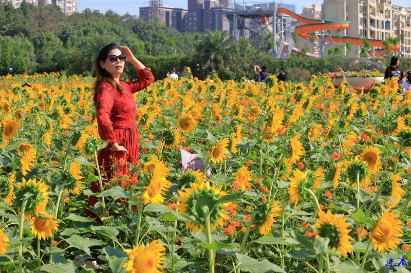 10.3植物园--53.jpg