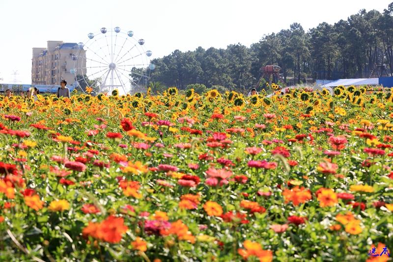 10.3植物园--46.jpg