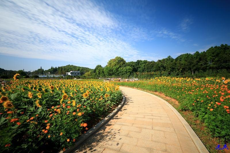 10.3植物园--67.jpg
