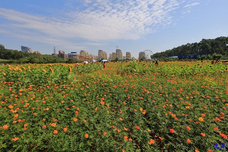 10.3植物园--130.jpg