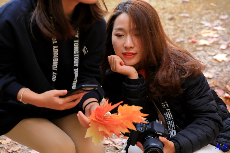 11.19红枫--90.jpg