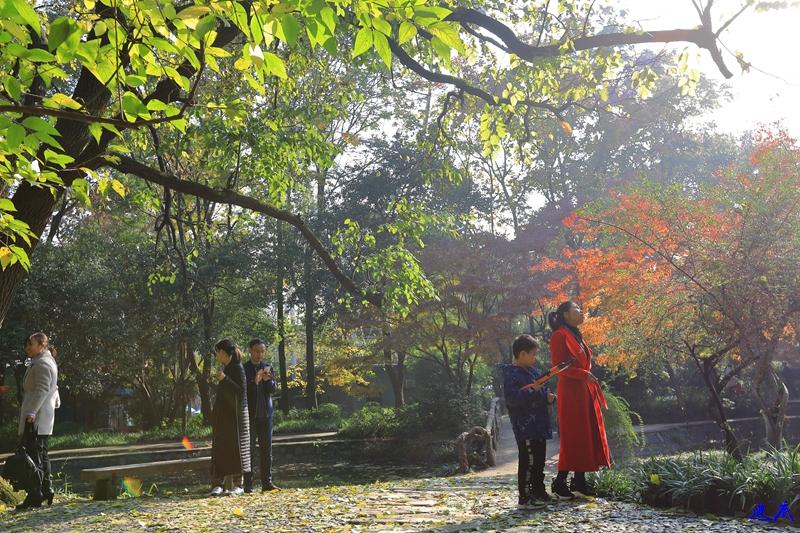 1.烈士公园21.jpg