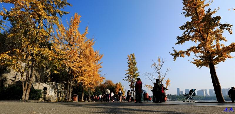 1.烈士公园53.jpg