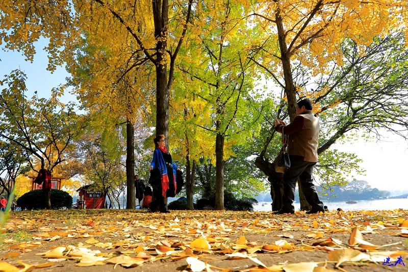 1.烈士公园58.jpg