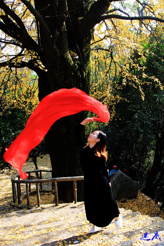 3.麓山秋色104.jpg