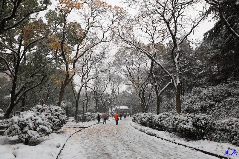 2.雪景--2.jpg