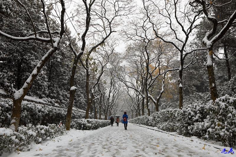 2.雪景--18.jpg