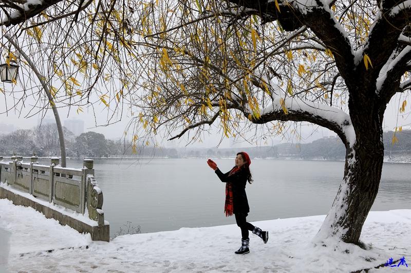 2.雪景--149.jpg