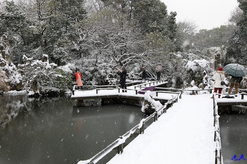 2.雪景--145.jpg