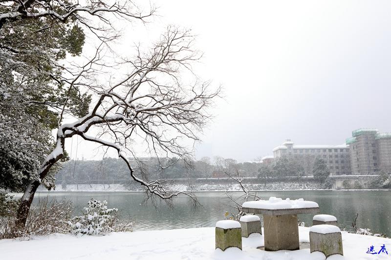 2.雪景--171.jpg