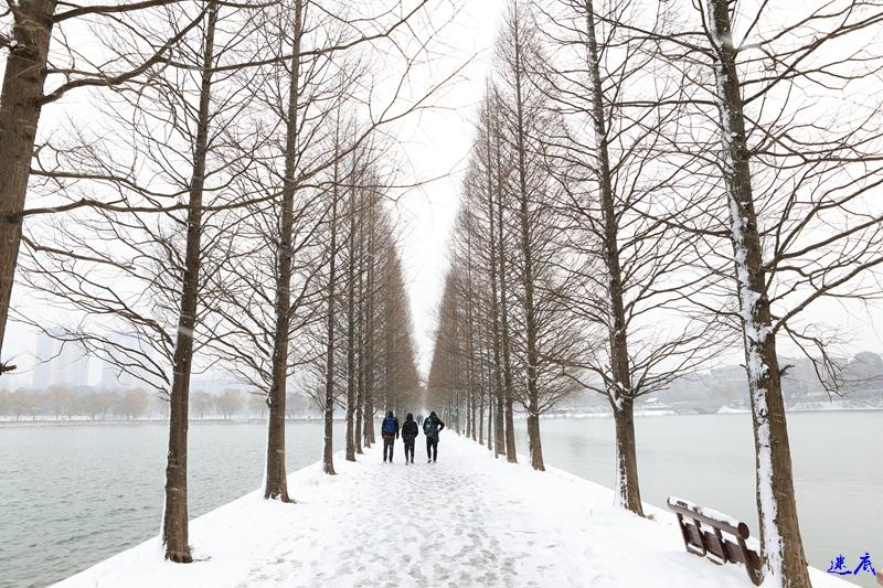 2.雪景--162.jpg