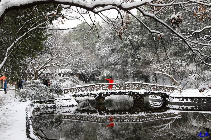 2.雪景--179.jpg
