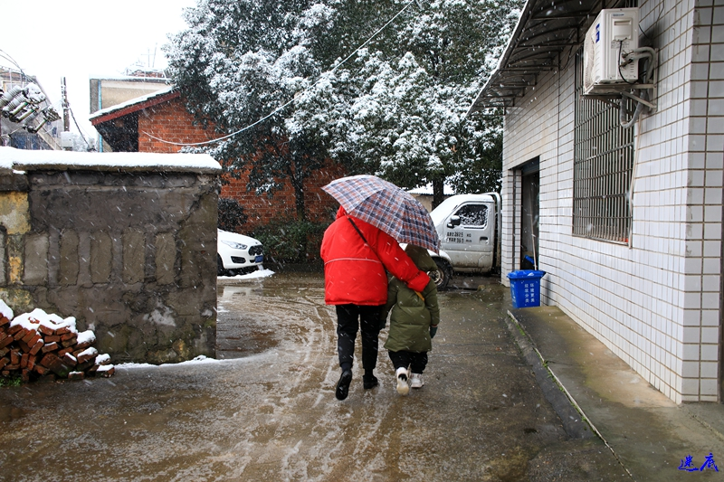 19年第一场雪--3.jpg