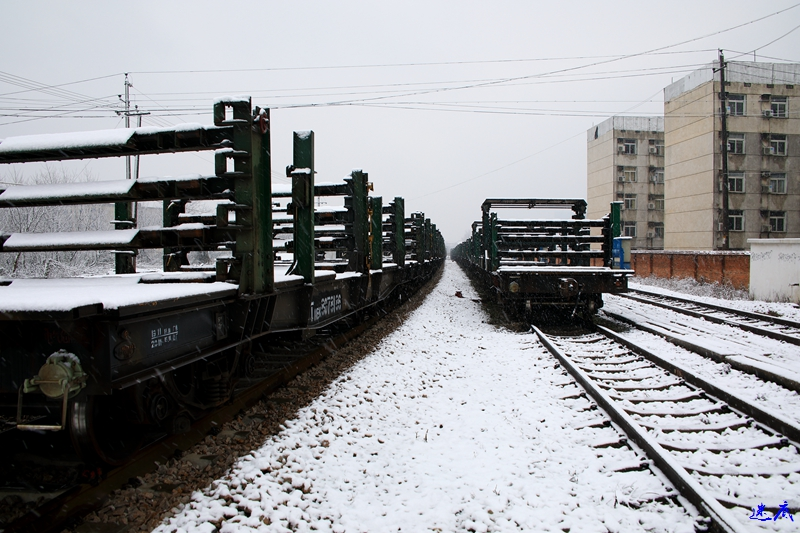 19年第一场雪--6.jpg