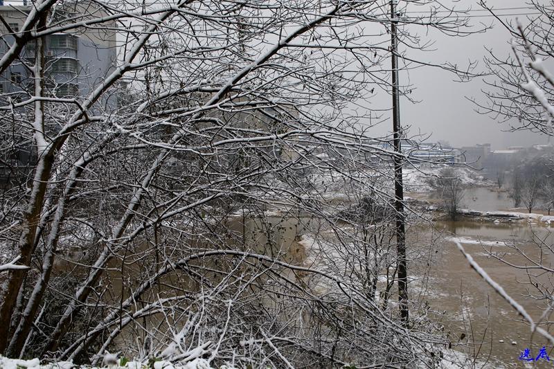 19年第一场雪--18.jpg