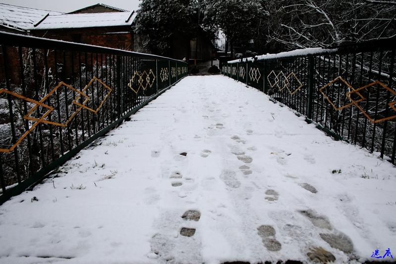 19年第一场雪--20.jpg