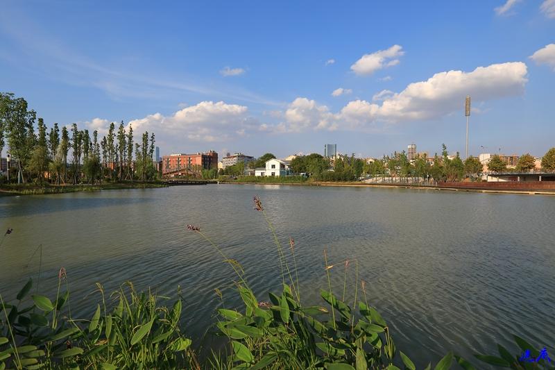 后湖--17.jpg